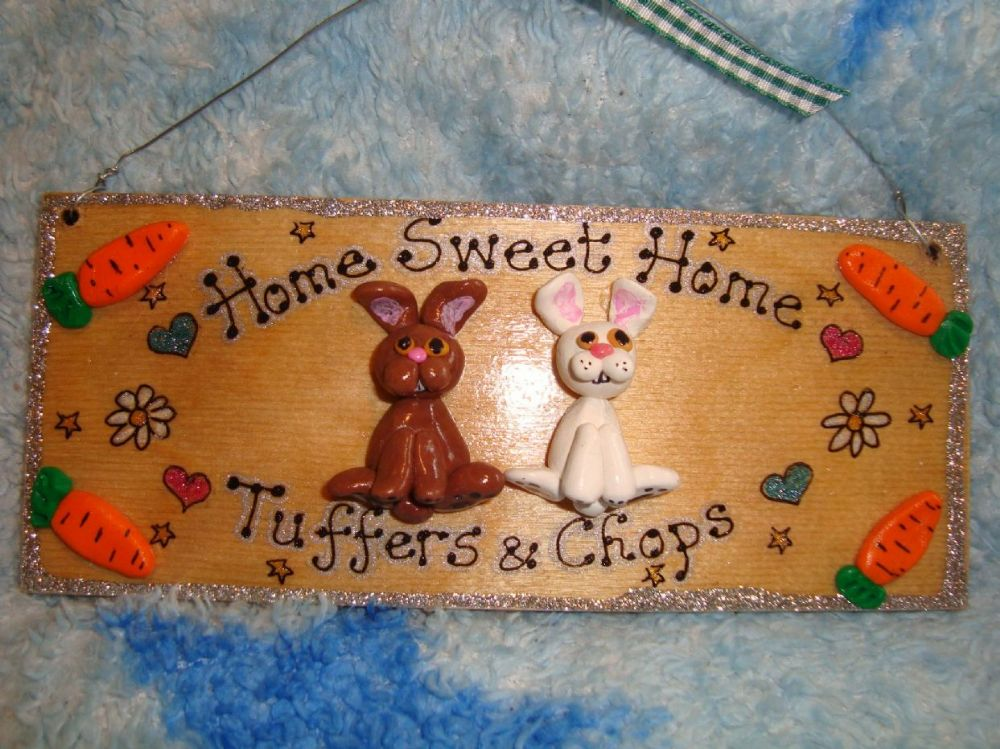 2 character 3d Bunny Rabbit Hutch Run Room Home  House Cage Personalised Plaque Sign